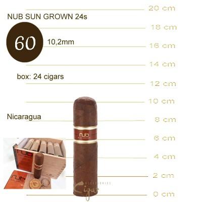NUB SUN GROWN 4X60  24s